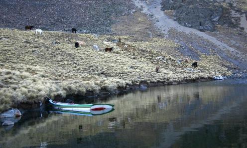 2009 Bolivie (108)