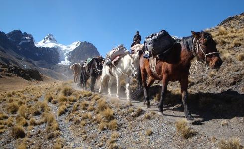 2009 Bolivie (115)