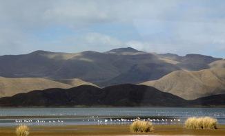 2009 Bolivie (215)