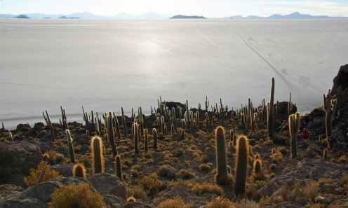 2009 Bolivie (235)