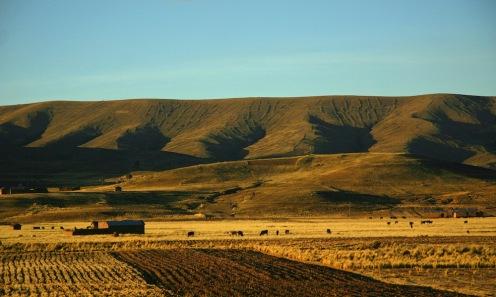 2009 Bolivie (433)
