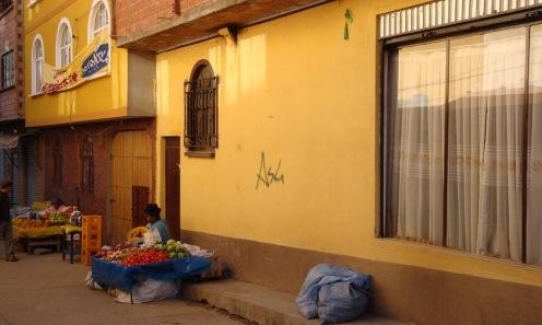 2009 Bolivie (49)