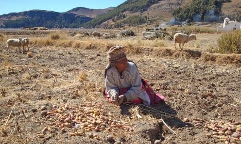 2009 Bolivie (70)